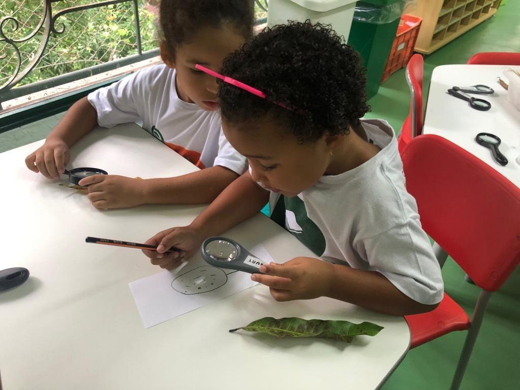 Educação-Infantil-Escola-Parque2