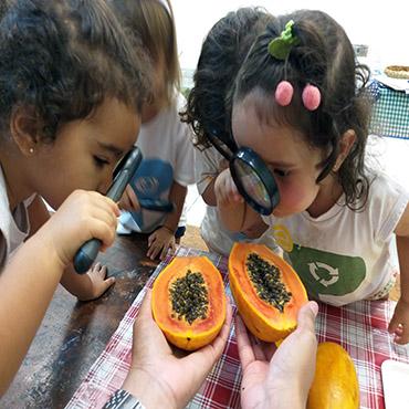 alimentação-educação-infantil
